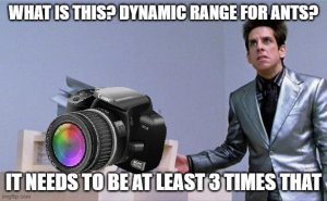 Is this a Dynamic Range for ants?