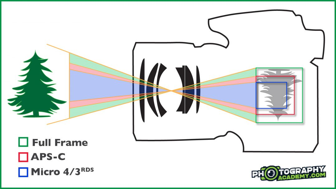 An illustration showing how crop factor works